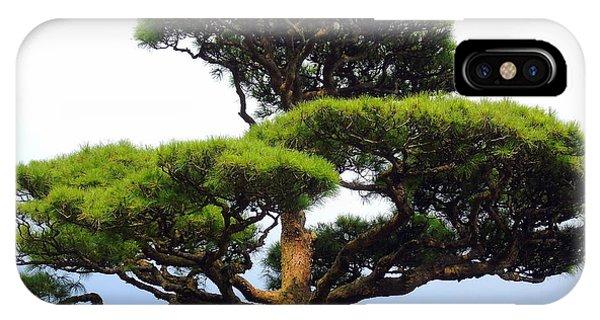 Black Pine Japan IPhone Case