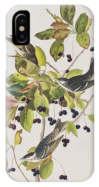 Warbler iPhone Case - Black Poll Warbler by John James Audubon