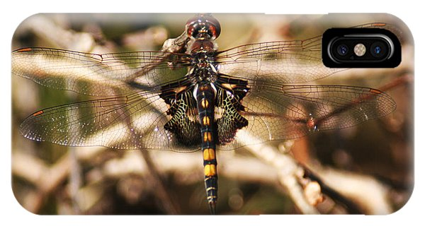 IPhone Case featuring the photograph Black Saddlebags Dragonfly by William Selander