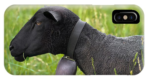 Black Sheep IPhone Case