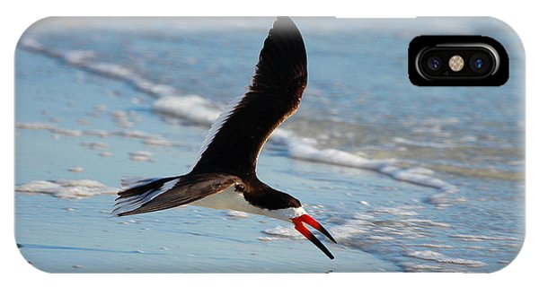 Black Skimmer IPhone Case