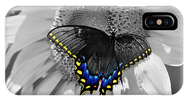Black Swallowtail And Sunflower Color Splash IPhone Case