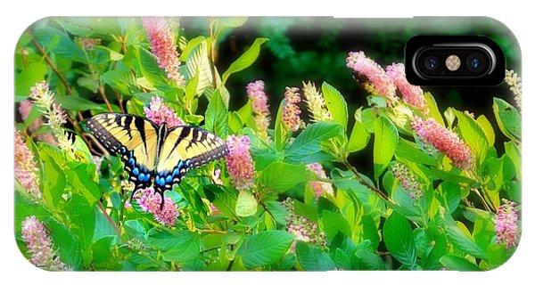Black Swallowtail IPhone Case