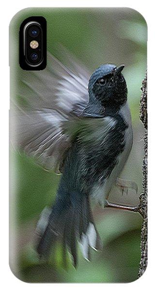 Black Throated Blue #1 IPhone Case