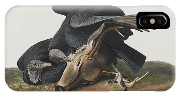 Carcass iPhone Case - Black Vulture Or Carrion Crow by John James Audubon