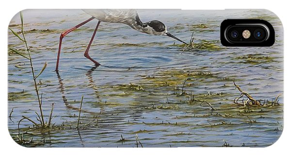 IPhone Case featuring the painting Black Winged Stilt by Alan M Hunt
