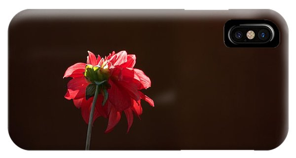 Black With Rose IPhone Case