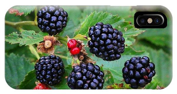 Blackberries 2 IPhone Case