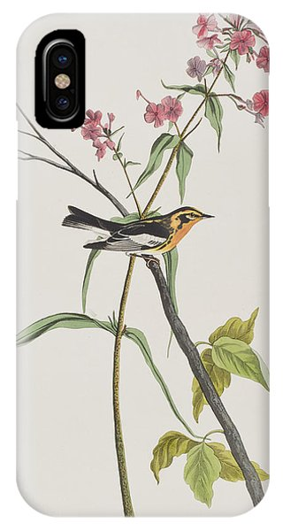 Warbler iPhone Case - Blackburnian Warbler by John James Audubon