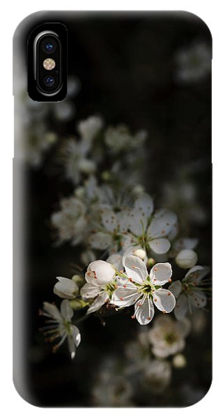 Blackthorn Flowers IPhone Case
