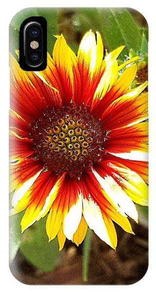 Blanketflower IPhone Case