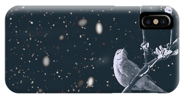 Titmouse iPhone Case - Bleak Winter by Martin Newman
