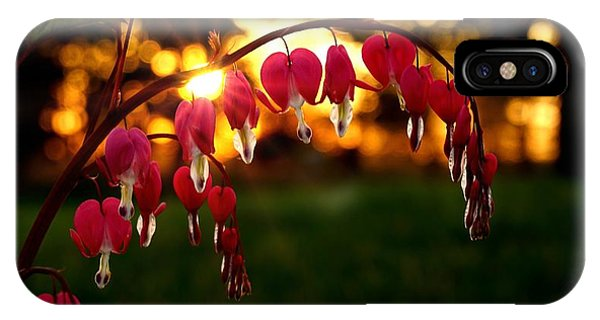 Bleeding Heart Sunset IPhone Case