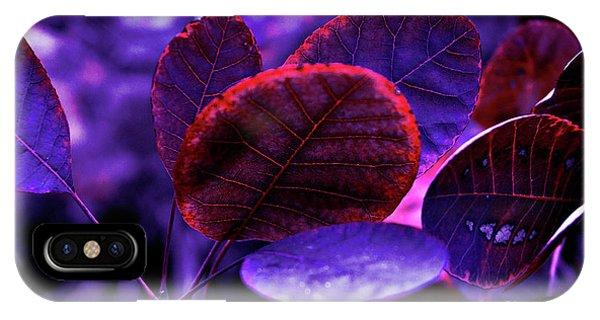 Bleeding Violet Smoke Bush Leaves - Pantone Violet Ec IPhone Case