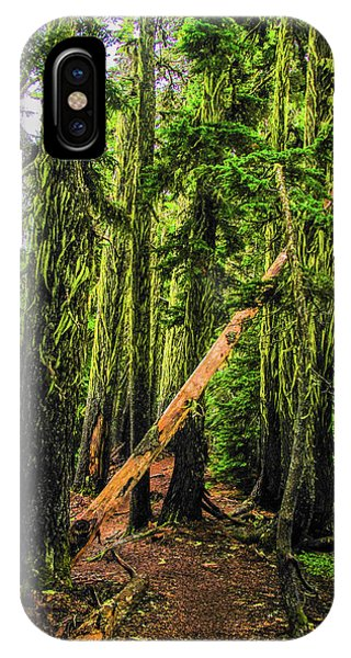 Blocked Trail IPhone Case