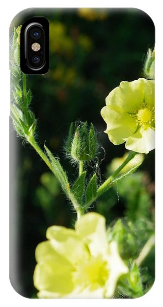 Bloomin Happy 1 IPhone Case