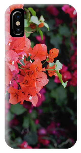 Bougainvillea iPhone Case - Blooming Bougainvillea- Photography By Linda Woods by Linda Woods