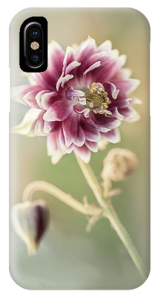 Blooming Columbine Flower IPhone Case