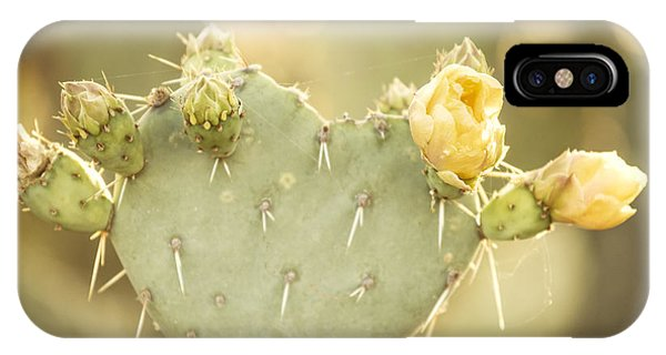 Pears iPhone Case - Blooming Prickly Pear Cactus by Juli Scalzi