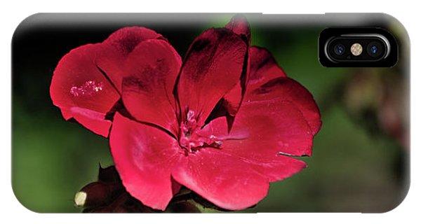 Blooming Red Geranium IPhone Case