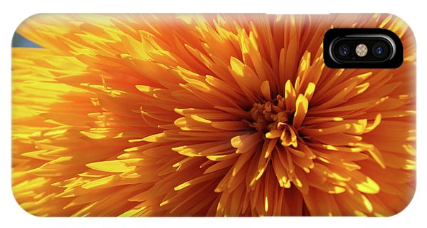Blooming Sunshine IPhone Case