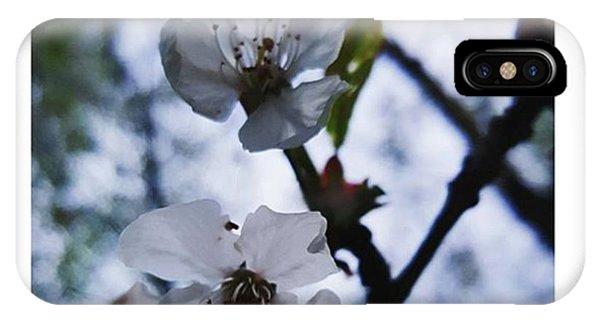 #blossom #spring #macro #flower #pretty Phone Case by Natalie Anne