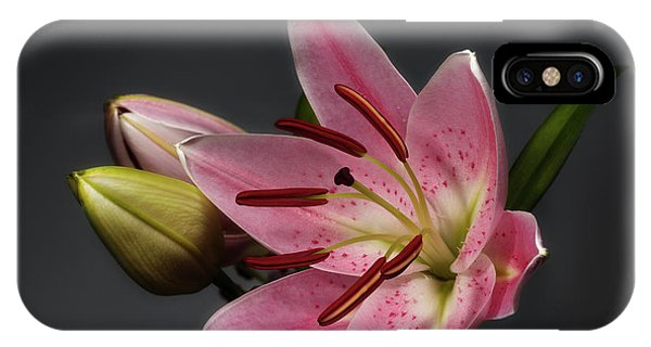Blossoming Pink Lily Flower On Dark Background IPhone Case