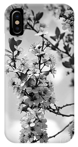 Blossoms In Black And White IPhone Case