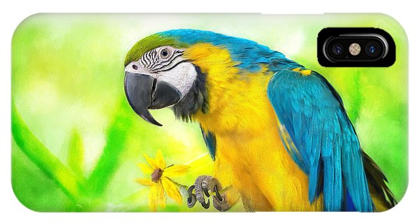 Avian iPhone Case - Blue And Yellow Macaw by Lois Bryan