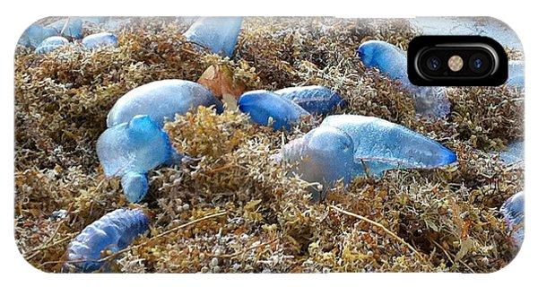 Siphonophore iPhone Case - Seeing Blue At The Beach by Karen Zuk Rosenblatt