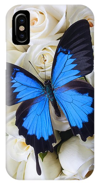 Horticulture iPhone Case - Blue Butterfly On White Roses by Garry Gay