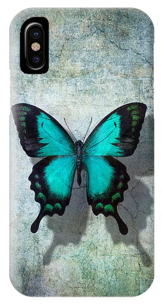 Insect iPhone Case - Blue Butterfly Resting by Garry Gay