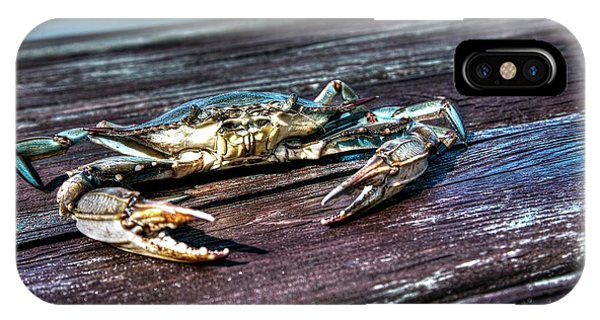 Blue Crab - Above View IPhone Case