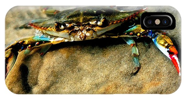Beach iPhone Case - Blue Crab by Joan McCool