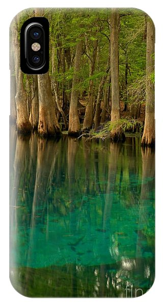 Blue Cypress Reflections IPhone Case