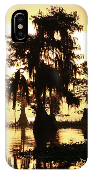 Blue Cypress Yellow Light IPhone Case