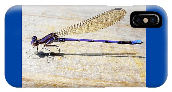 Blue Damselfly IPhone Case