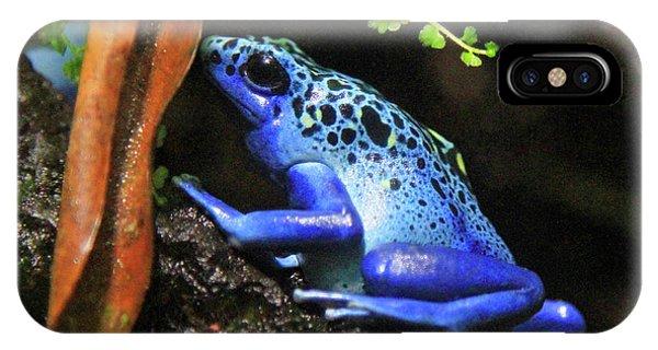 Blue Dart Frog IPhone Case
