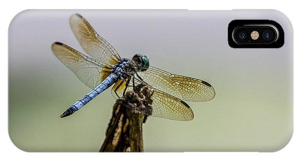 Blue Dragon IPhone Case