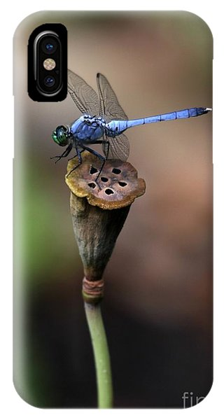 Blue Dragonfly Dancer IPhone Case