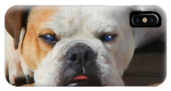 Blue-eyed English Bulldog - Painting IPhone Case