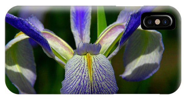 Blue Flag Iris IPhone Case