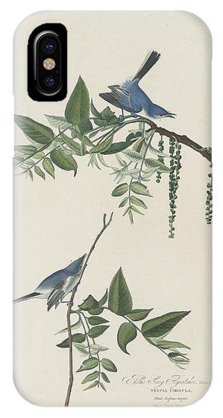 Flycatcher iPhone Case - Blue-grey Flycatcher by Dreyer Wildlife Print Collections