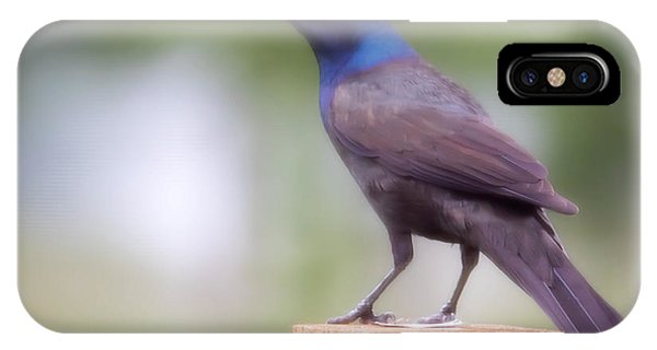 Blue Head IPhone Case