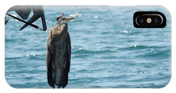 Blue Heron #3 IPhone Case