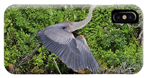 Blue Heron IPhone Case