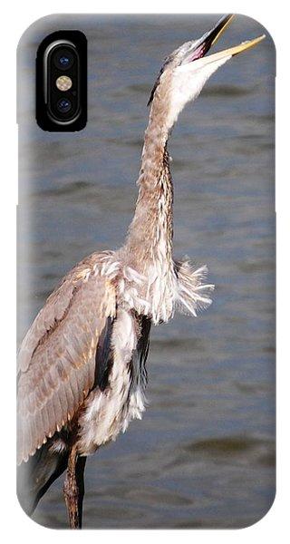 Blue Heron Calling IPhone Case