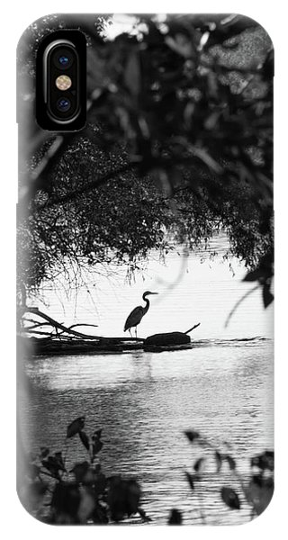 Blue Heron In Black And White. IPhone Case