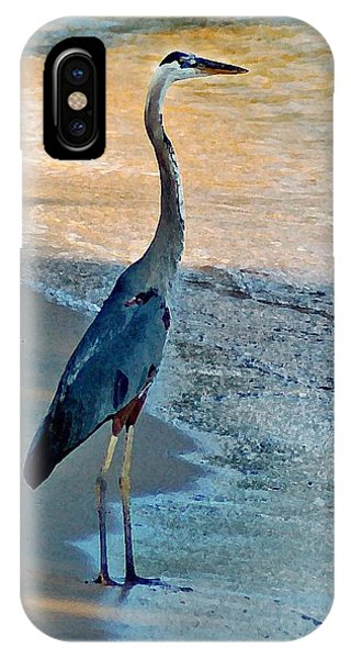 Blue Heron On The Beach Close Up IPhone Case