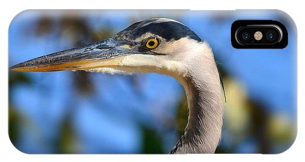 Blue Heron Profile IPhone Case
